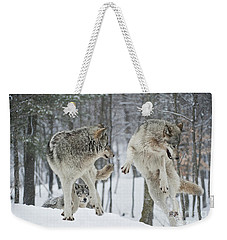 Weekender Tote Bag featuring the photograph Dances With Wolves by Wolves Only