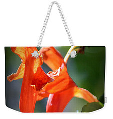 Weekender Tote Bag featuring the photograph Dancing In The Moonlight by Debra Martz