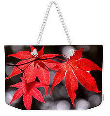 Weekender Tote Bag featuring the photograph Dancing Japanese Maple by Rona Black