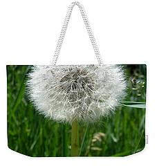 Dandelion Fluff Weekender Tote Bag by Kerri Mortenson