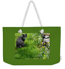 Weekender Tote Bag featuring the photograph Dandy Lion Cat by Christina Verdgeline