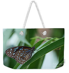 Dark Blue Tiger Butterfly #2 Weekender Tote Bag by Judy Whitton