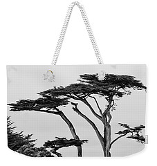 Dark Cypress Weekender Tote Bag by Melinda Ledsome