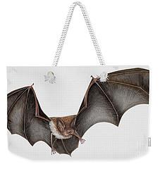 Daubentons Bat Myotis Daubentonii - Murin De Daubenton-murcielago Ribereno-vespertilio Di Daubenton Weekender Tote Bag