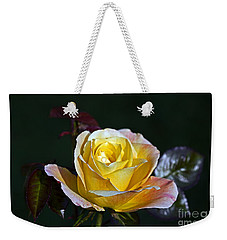 Weekender Tote Bag featuring the photograph Day Breaker Rose by Kate Brown