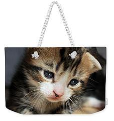 Daydreamer Kitten Weekender Tote Bag