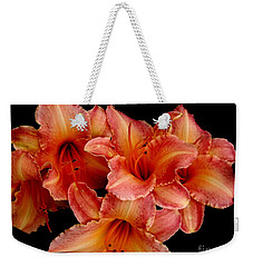 Weekender Tote Bag featuring the photograph Daylilies 1 by Rose Santuci-Sofranko
