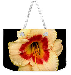 Weekender Tote Bag featuring the photograph Daylily 3 by Rose Santuci-Sofranko