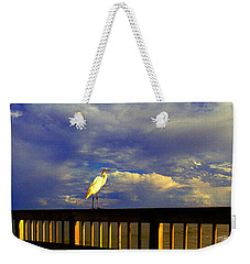 Daytona Beach Fl Bird Sun Glow Pier  Weekender Tote Bag
