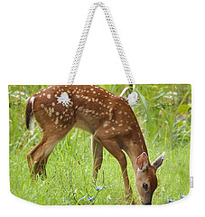 Weekender Tote Bag featuring the photograph Little Fawn Blue Wildflowers by Nava Thompson