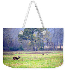 Deer At Cades Cove Weekender Tote Bag by Kenny Francis