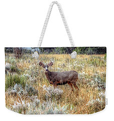 Deer In Garden Of The Gods Weekender Tote Bag by Lanita Williams