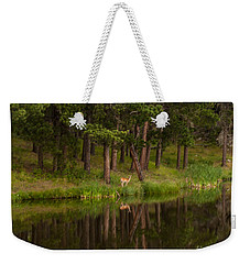 Weekender Tote Bag featuring the photograph Deer In The Mist by Steven Reed