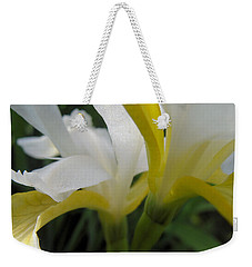 Weekender Tote Bag featuring the photograph Delicate Iris by Cheryl Hoyle
