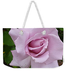 Weekender Tote Bag featuring the photograph Delicate Purple Rose by Lingfai Leung