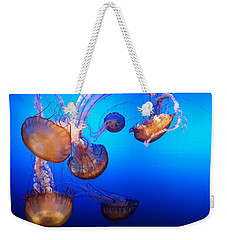 Weekender Tote Bag featuring the photograph Delicate Waltz by Caryl J Bohn