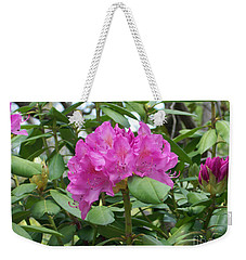 Weekender Tote Bag featuring the photograph Delicate Beauty by Roberta Byram