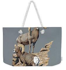 Desert Bighorn Rams Weekender Tote Bag
