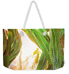 Desert Heat Weekender Tote Bag by Roselynne Broussard