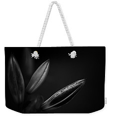 Weekender Tote Bag featuring the photograph Developing Day Lily Depth In Monochrome by Ben Shields