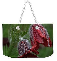Dew Covered Pasque Flower Weekender Tote Bag by Jane Luxton