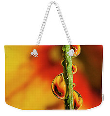 Weekender Tote Bag featuring the photograph Dew Droplet Fractals by Arthur Fix