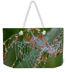 Weekender Tote Bag featuring the photograph Dewdrop Inn by Dianne Cowen