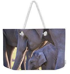 Dhikala Elephants Weekender Tote Bag by David Beebe