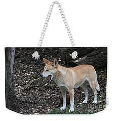 Dingo #2 Weekender Tote Bag