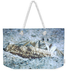 Weekender Tote Bag featuring the photograph Beach Crab Snacking by Belinda Lee