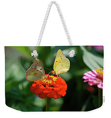 Weekender Tote Bag featuring the photograph Dinner Table For Two Butterflies by Thomas Woolworth