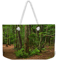 Diverted Paths Weekender Tote Bag