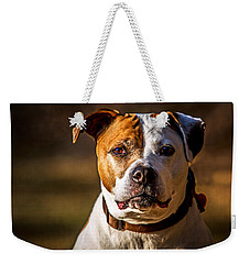 Weekender Tote Bag featuring the photograph Dixie Doodle The Pit Bull by Eleanor Abramson
