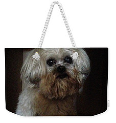 Dog In The Box Weekender Tote Bag