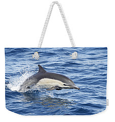 Dolphin At Play Weekender Tote Bag by Shoal Hollingsworth
