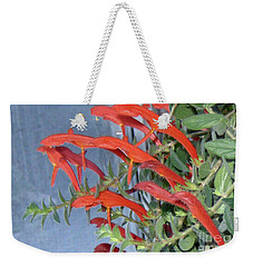 Weekender Tote Bag featuring the photograph Dolphin Plant by Brenda Brown
