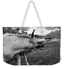 Donkeys Weekender Tote Bag