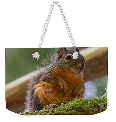 Douglas Squirrel Weekender Tote Bag