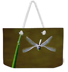 Dragonflight Weekender Tote Bag