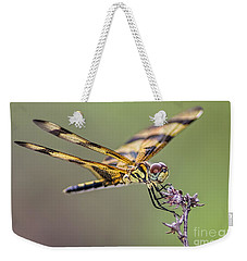 Weekender Tote Bag featuring the photograph The Halloween Pennant Dragonfly by Olga Hamilton
