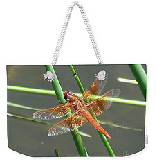Weekender Tote Bag featuring the photograph Dragonfly Orange by Kerri Mortenson