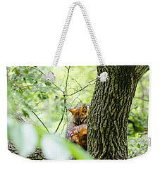Weekender Tote Bag featuring the photograph Dreaming Above All by Steven Santamour