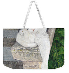 Weekender Tote Bag featuring the painting Dreaming Of Stone Lions by Pat Erickson
