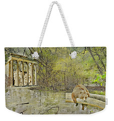 Weekender Tote Bag featuring the photograph Drifter by Liane Wright
