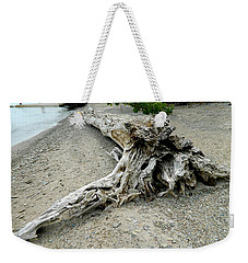 Weekender Tote Bag featuring the photograph Driftwood At Lake Erie by Kathy Barney