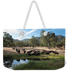 Drivin' Cattle Weekender Tote Bag