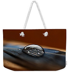 Drop On A Bluejay Feather Weekender Tote Bag by Susan Capuano