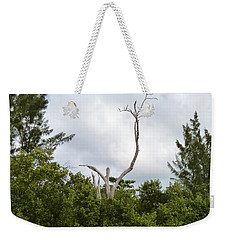Weekender Tote Bag featuring the photograph Druid Dance by Amar Sheow