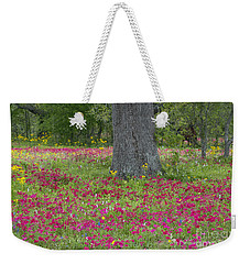 Weekender Tote Bag featuring the photograph Drummonds Phlox And Crown Tickweed Central Texas by Dave Welling