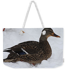 Weekender Tote Bag featuring the photograph Duck Playing In The Snow by John Telfer